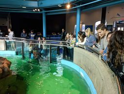 Maritime Aquarium tour provides students with an understanding of human impact on Long Island Sound