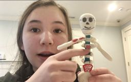 Skeletons emerge from Grade 7 Honors Biology students' closets, kitchens, and garages